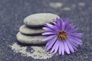 yoga classes in adelaide essence of yoga